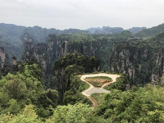 Zhangjiajie mountaintop rice field