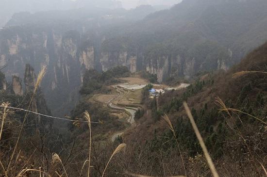 the Mountaintop Rice Field in Zhangjiajie National Forest Park