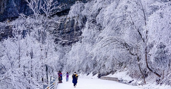 Zhangjiajie Forest Park in Winter