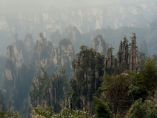 Tianzi Mountain Peak Forest