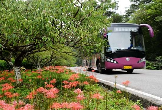 Zhangjiajie National Forest Park Shuttle Bus