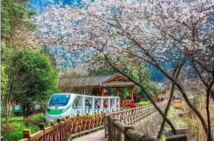 Zhangjiajie in Spring